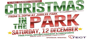 Te Puke's Christmas in the Park