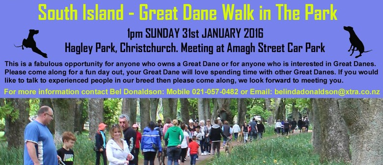 South Island Great Dane Walk In the Park