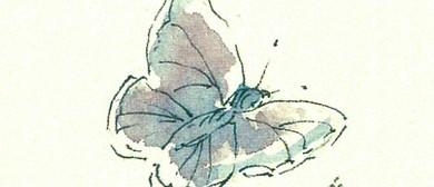 """'Auckland's Butterflies"""" Forest & Bird Auckland Branch Talk"""