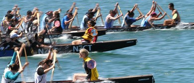 Harbour Fun Day - NZCT Dragon Boat Festival - Summer City