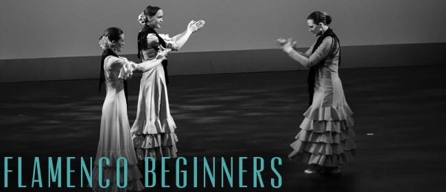 Flamenco Beginners with Amira Brock