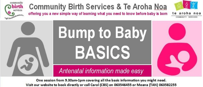 Bump to Baby Basics - Antenatal Information Made Easy