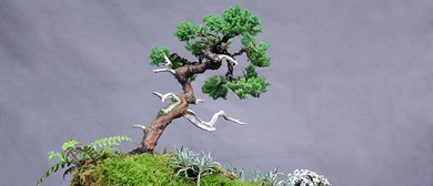 Auckland Bonsai Society National Convention and Public Show