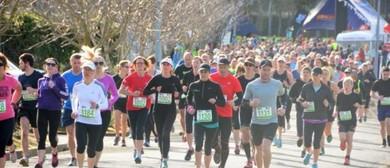 Manawatu Striders Marathon/Half Marathon