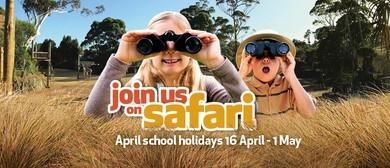 Join us on an African Safari