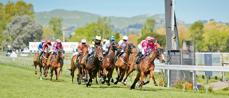 FastTrackinsurance Hawke's Bay Gold Cup
