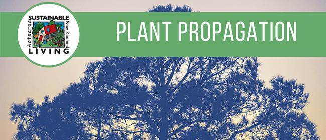 Plant Propagation workshop: Sustainable Living Programme