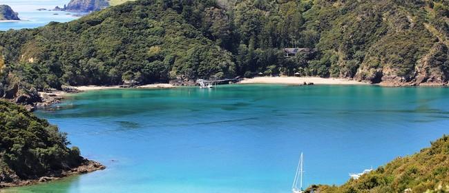 Moturua & Motuarohia Islands.  Walk 7 BOI Walking Weekend