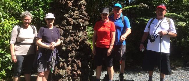 Waitangi Estate - Walk 11 - BOI Walking Weekend