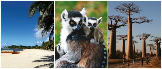 Madagascar: Film Screening and Trip Information