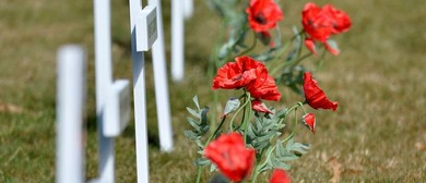 Fields of Remembrance