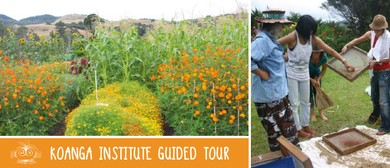 Koanga Institute Guided Tour: Organic Seed Gardens etc.
