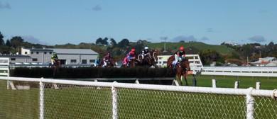 Jumps Raceday