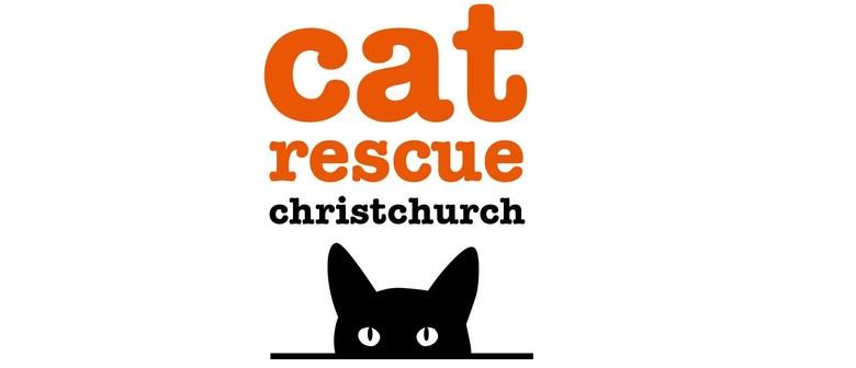 Cat Rescue Canterbury