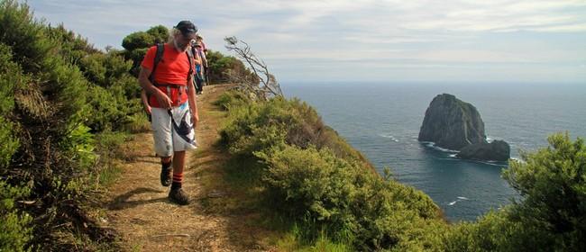 Rakaumangamanga – Cape Brett Lighthouse Overnight Walk