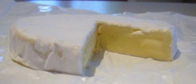 Cheese Making Masterclass: Camembert, Mozzarella and More