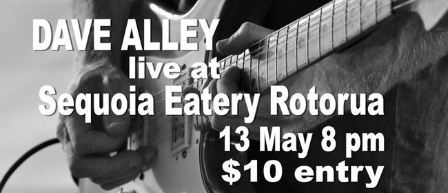 Dave Alley - NZ Guitarist & Percussionist