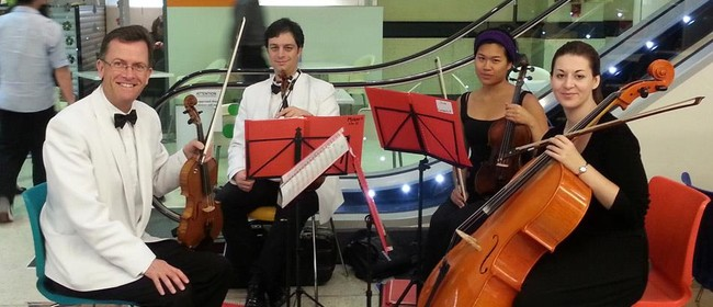The Starlight String Quartet