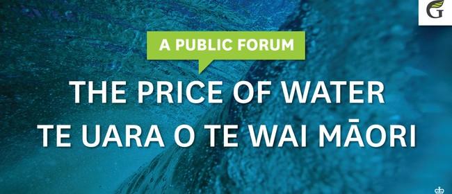 The Price of Water - Te Uara O Te Wai Māori