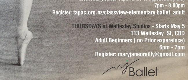 Beginners Adult Ballet classes