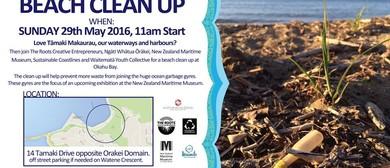 Okahu Bay Beach Clean Up