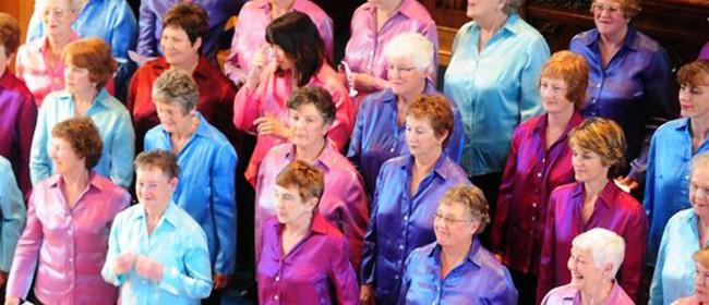 Dunedin Star Singers