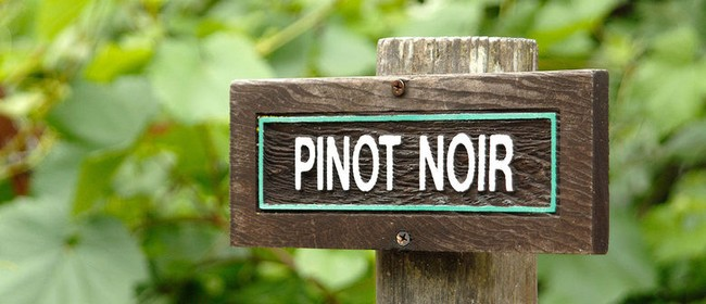 New Zealand Pinot Noir: New Wines, Vintages and Producers