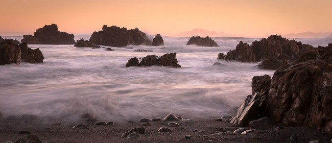 Wellington Coastal Photography Workshop