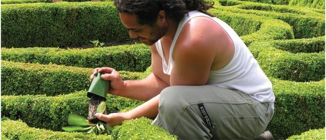 Exhibition - Botanic Gardens Provide More Than Meets the Eye