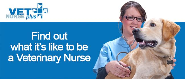 Vet Nurse Plus Open Day