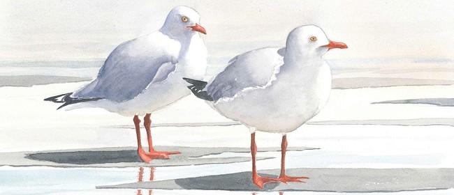 Shorebirds of Petone Watercolours - Grahame D'Urville Harris