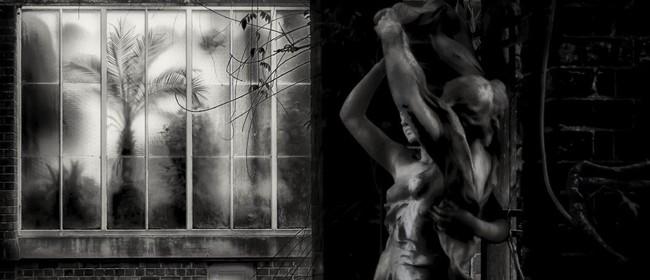 Lynn Clayton - Photographic Art Exhibition