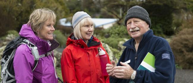 New Zealand Botanical Oddities
