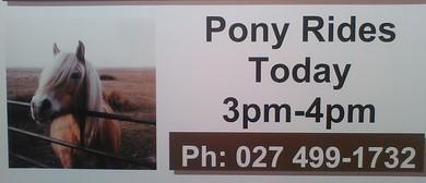 Childrens Pony Rides Invitation