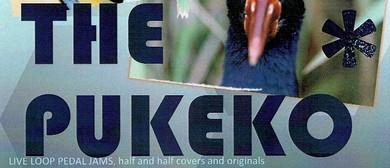 The Pukeko