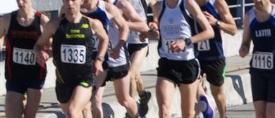 Annual Clyde to Alexandra Road Runs-Walks