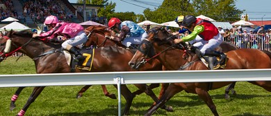 Windsor Park Plate - Bostock New Zealand Spring Racing