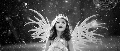 Fairy School With Fairy Rosebud