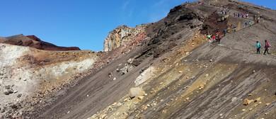 Rotorua Rock Mineral Gem & Fossil Club