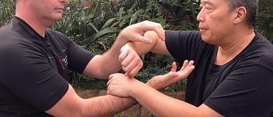 Wing Chun: Enchancing Chi Sao Skills & Structures