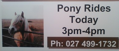 Childrens Pony Rides Invitation
