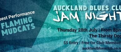 Flaming Mudcats & ABC Jam Night