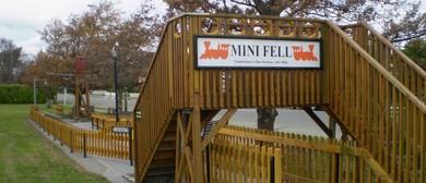 Mini Fell Train Carnival