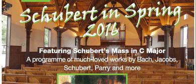 Schubert in Spring 2016