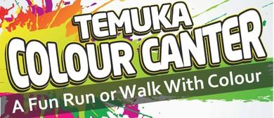 Temuka Colour Canter