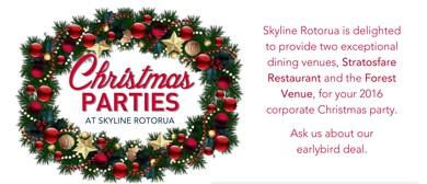 Skyline Rotorua Christmas Party