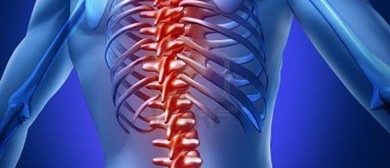 Chiropractor Spine and Health Screening