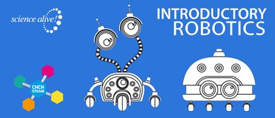 Introductory Robotics