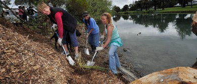 Waikanae Stream Clean Up Festival
