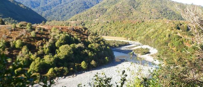 Explore Otaki Gorge and Otaki Forks